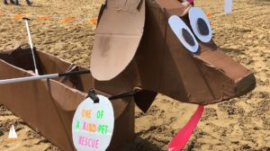 Cardboard Boat Race 2017 @ Turkeyfoot Beach at the Portage Lakes | Akron | Ohio | United States